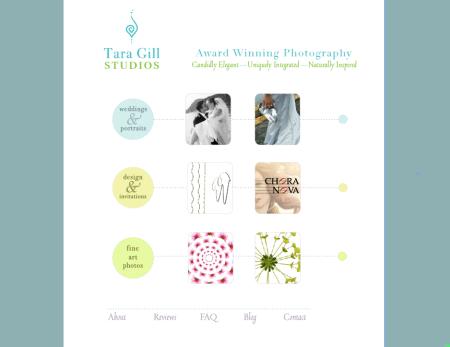 Tara Gill Studios Home Page
